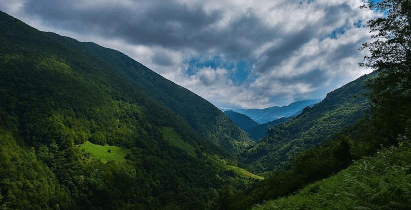جنگل فندقلو مشرف به گردنه حيران